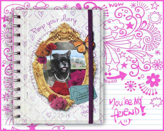 Pimp Your Diary2013-2014