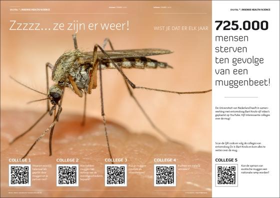 MuggenplaagZomer2016